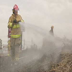 SFD Brush Fire 2 1-26-17